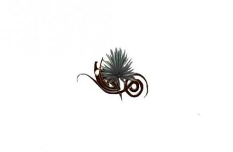 Mezcales Tierra Mezcalera logo